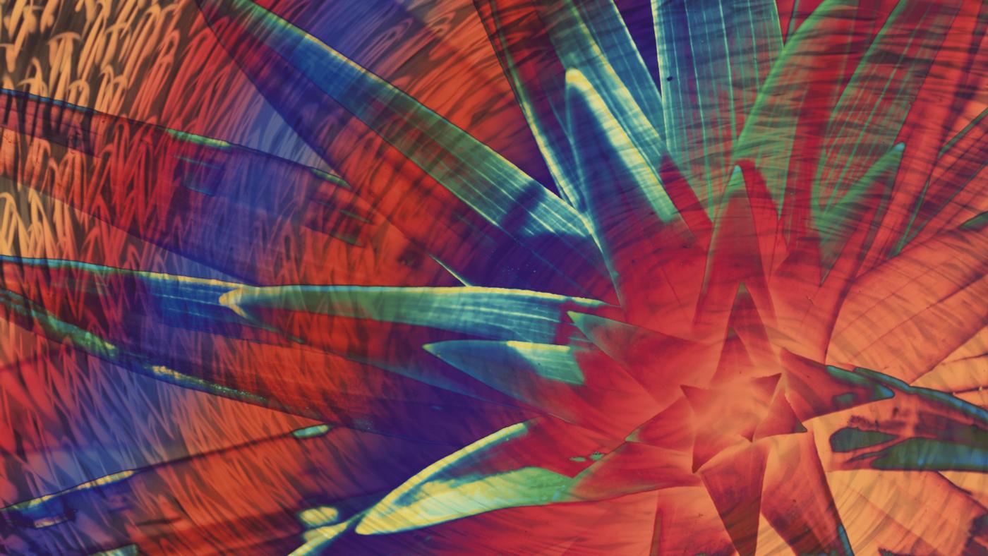 Therapeutic Hallucinogen Courses Are Emerging Across America